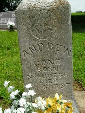 CONE, ANDREW - Boone County, Arkansas | ANDREW CONE - Arkansas Gravestone Photos