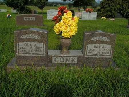 CONE, ROY J. - Boone County, Arkansas | ROY J. CONE - Arkansas Gravestone Photos