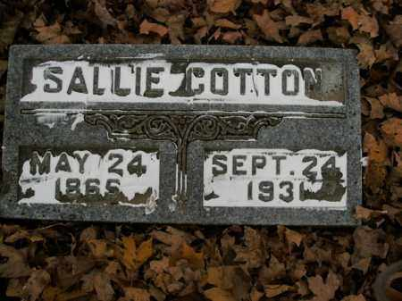 COTTON, SALLIE - Boone County, Arkansas | SALLIE COTTON - Arkansas Gravestone Photos