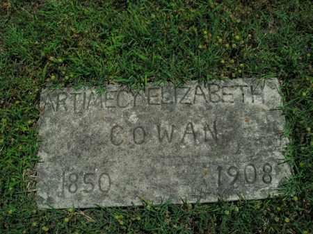 COWAN, ARTIMECY ELIZABETH - Boone County, Arkansas | ARTIMECY ELIZABETH COWAN - Arkansas Gravestone Photos