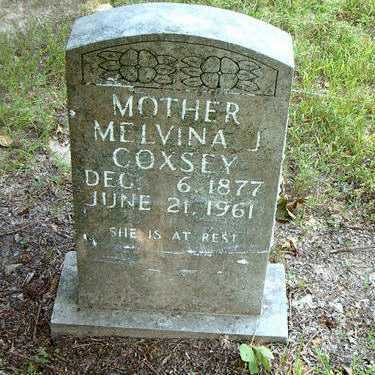 COXSEY, MELVINA JANE - Boone County, Arkansas | MELVINA JANE COXSEY - Arkansas Gravestone Photos