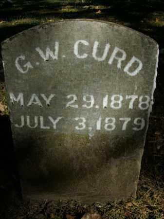 CURD, G.W. - Boone County, Arkansas | G.W. CURD - Arkansas Gravestone Photos