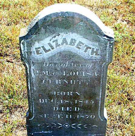 CURNUTT, ELIZABETH - Boone County, Arkansas | ELIZABETH CURNUTT - Arkansas Gravestone Photos
