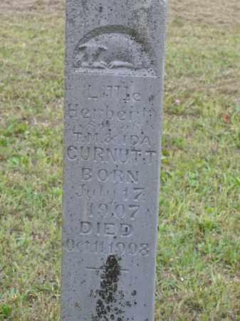 CURNUTT, HERBERT - Boone County, Arkansas | HERBERT CURNUTT - Arkansas Gravestone Photos