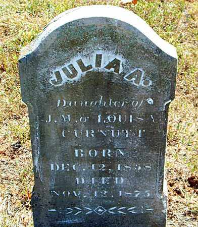 CURNUTT, JULIA  A. - Boone County, Arkansas | JULIA  A. CURNUTT - Arkansas Gravestone Photos