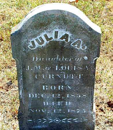 CURNUTT, JULIA  A. - Boone County, Arkansas | JULIA  A. CURNUTT - Arkansas Gravestone Photos