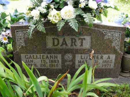 DART, LUTHER A. - Boone County, Arkansas | LUTHER A. DART - Arkansas Gravestone Photos