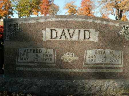 DAVID, ESTA M. - Boone County, Arkansas | ESTA M. DAVID - Arkansas Gravestone Photos