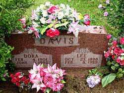DAVIS, LEE - Boone County, Arkansas | LEE DAVIS - Arkansas Gravestone Photos