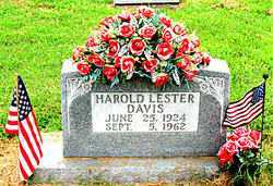 DAVIS, HAROLD LESTER - Boone County, Arkansas | HAROLD LESTER DAVIS - Arkansas Gravestone Photos