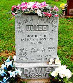 DAVIS, JULEE - Boone County, Arkansas | JULEE DAVIS - Arkansas Gravestone Photos