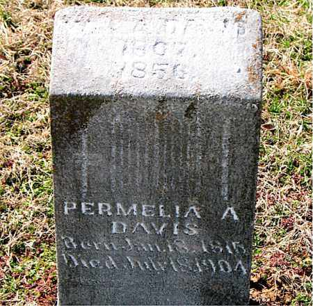 DAVIS, PERMELIA  A. - Boone County, Arkansas | PERMELIA  A. DAVIS - Arkansas Gravestone Photos