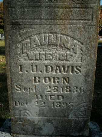 DAVIS, PAULINA - Boone County, Arkansas | PAULINA DAVIS - Arkansas Gravestone Photos