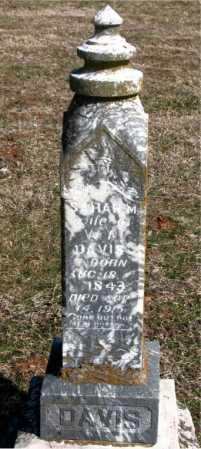 DAVIS, SARAH  MELETHA - Boone County, Arkansas | SARAH  MELETHA DAVIS - Arkansas Gravestone Photos