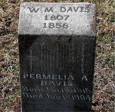 DAVIS, WILLIAM MILLIGAN - Boone County, Arkansas | WILLIAM MILLIGAN DAVIS - Arkansas Gravestone Photos