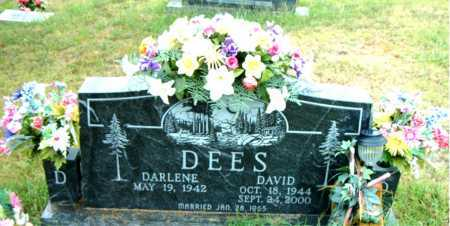 DEES, DAVID - Boone County, Arkansas | DAVID DEES - Arkansas Gravestone Photos