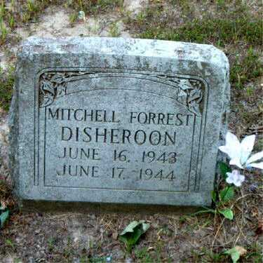 DISHEROON, MITCHELL FORREST - Boone County, Arkansas | MITCHELL FORREST DISHEROON - Arkansas Gravestone Photos