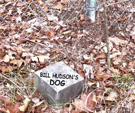 DOG, BILL HUDSON'S - Boone County, Arkansas | BILL HUDSON'S DOG - Arkansas Gravestone Photos