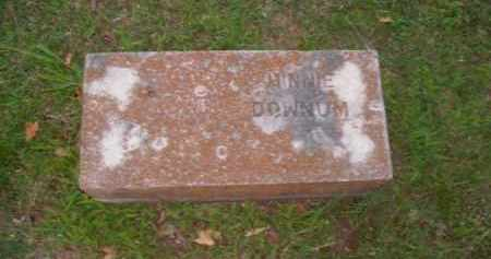 DOWNUM, MINNIE - Boone County, Arkansas | MINNIE DOWNUM - Arkansas Gravestone Photos