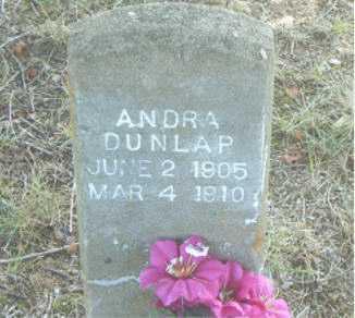 DULAP, ANDRA - Boone County, Arkansas | ANDRA DULAP - Arkansas Gravestone Photos