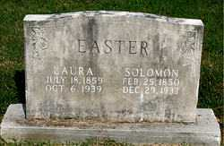 COULSON EASTER, LAURA ANNA - Boone County, Arkansas | LAURA ANNA COULSON EASTER - Arkansas Gravestone Photos