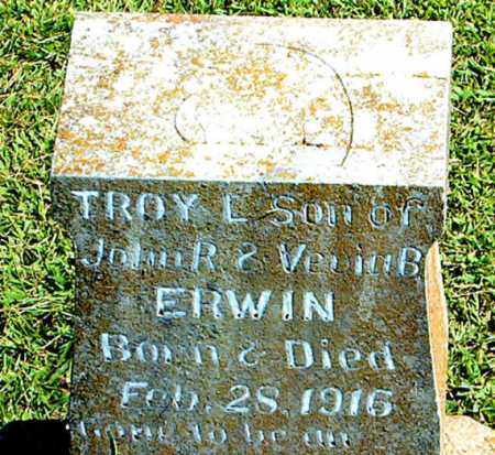 ERWIN, TROY L. - Boone County, Arkansas | TROY L. ERWIN - Arkansas Gravestone Photos