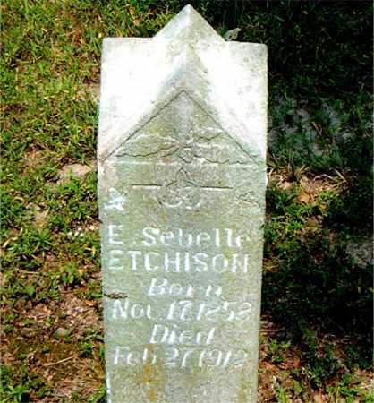 ETCHISON, E.SEBELLE - Boone County, Arkansas | E.SEBELLE ETCHISON - Arkansas Gravestone Photos