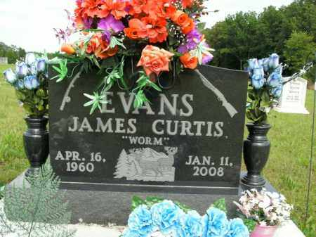 EVANS, JAMES CURTIS - Boone County, Arkansas | JAMES CURTIS EVANS - Arkansas Gravestone Photos