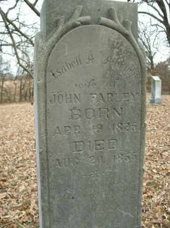 ALBRIGHT FARLEY, ISABELL A. - Boone County, Arkansas | ISABELL A. ALBRIGHT FARLEY - Arkansas Gravestone Photos