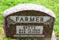 FARMER, BETTY - Boone County, Arkansas | BETTY FARMER - Arkansas Gravestone Photos