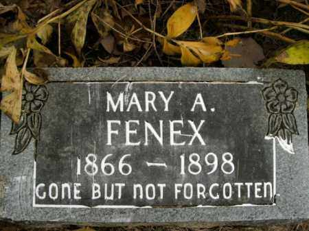 FENEX, MARY A. - Boone County, Arkansas | MARY A. FENEX - Arkansas Gravestone Photos