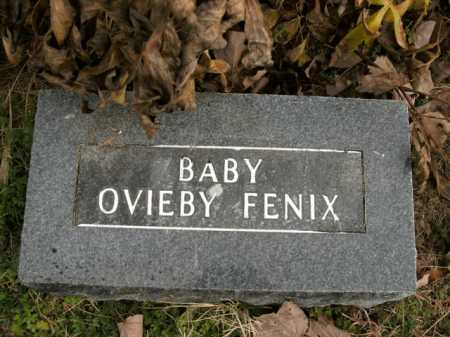 FENIX, OVIEBY - Boone County, Arkansas | OVIEBY FENIX - Arkansas Gravestone Photos