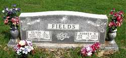 FIELDS, AUDREY BELLE - Boone County, Arkansas | AUDREY BELLE FIELDS - Arkansas Gravestone Photos