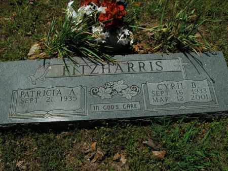 FITZHARRIS, CYRIL B. - Boone County, Arkansas | CYRIL B. FITZHARRIS - Arkansas Gravestone Photos