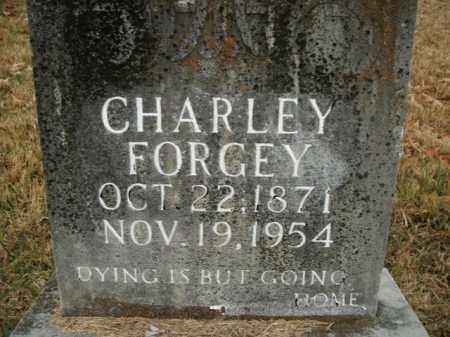 FORGEY, CHARLEY - Boone County, Arkansas | CHARLEY FORGEY - Arkansas Gravestone Photos