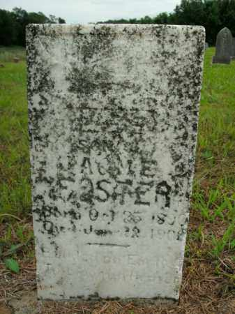 FOSTER, LEE - Boone County, Arkansas | LEE FOSTER - Arkansas Gravestone Photos