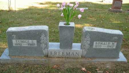 FREEMAN, EUNICE E. - Boone County, Arkansas | EUNICE E. FREEMAN - Arkansas Gravestone Photos