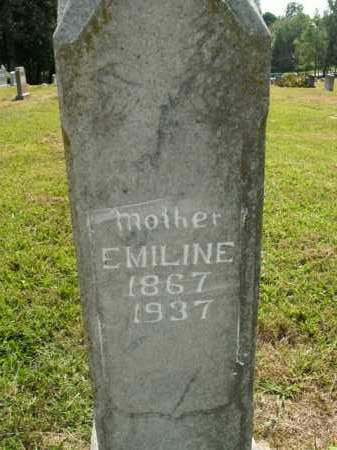 FULLERTON, ELISHA NATHAN - Boone County, Arkansas | ELISHA NATHAN FULLERTON - Arkansas Gravestone Photos