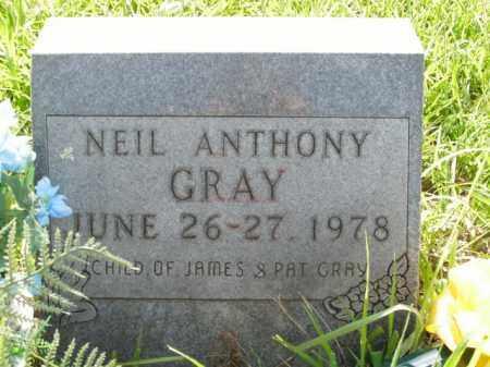GRAY, NEIL ANTHONY - Boone County, Arkansas | NEIL ANTHONY GRAY - Arkansas Gravestone Photos