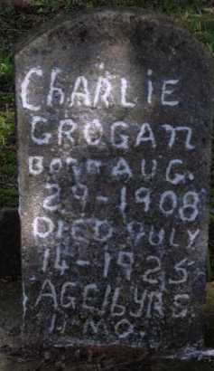 GROGAN, CHARLIE - Boone County, Arkansas | CHARLIE GROGAN - Arkansas Gravestone Photos