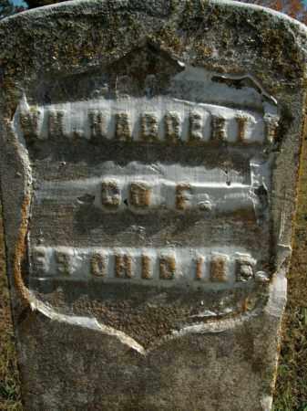 HAGGERTY  (VETERAN UNION), WILLIAM - Boone County, Arkansas | WILLIAM HAGGERTY  (VETERAN UNION) - Arkansas Gravestone Photos