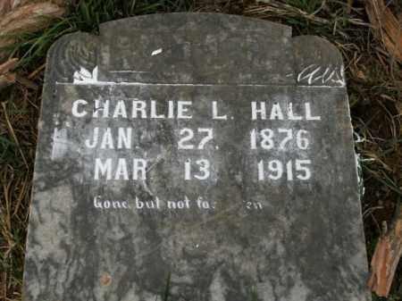 HALL, CHARLIE L. - Boone County, Arkansas | CHARLIE L. HALL - Arkansas Gravestone Photos