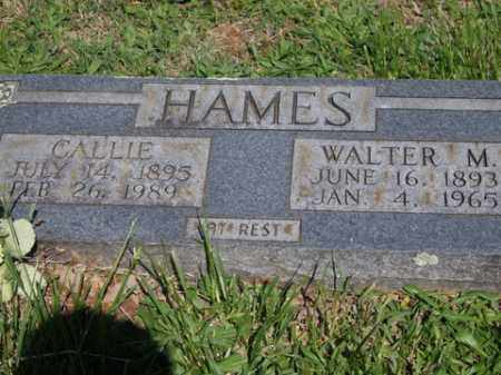 HAMES, CALLIE - Boone County, Arkansas | CALLIE HAMES - Arkansas Gravestone Photos