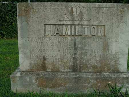 HAMILTON, EMMA VIRGINIA - Boone County, Arkansas | EMMA VIRGINIA HAMILTON - Arkansas Gravestone Photos