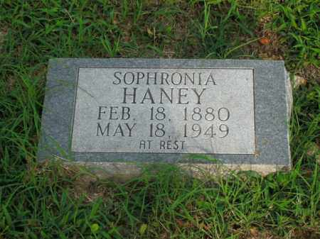 HANEY, SOPHRONIA - Boone County, Arkansas | SOPHRONIA HANEY - Arkansas Gravestone Photos