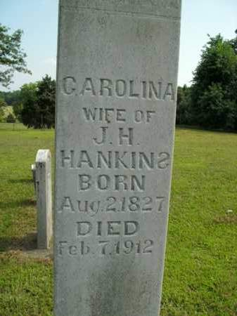 WALKER HANKINS, CAROLINA - Boone County, Arkansas | CAROLINA WALKER HANKINS - Arkansas Gravestone Photos