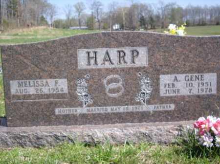 HARP, A. GENE - Boone County, Arkansas | A. GENE HARP - Arkansas Gravestone Photos