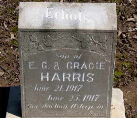 HARRIS, ECHOLS - Boone County, Arkansas | ECHOLS HARRIS - Arkansas Gravestone Photos