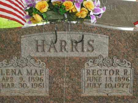 HARRIS, RECTOR R. - Boone County, Arkansas | RECTOR R. HARRIS - Arkansas Gravestone Photos
