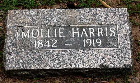 HARRIS, MOLLIE - Boone County, Arkansas | MOLLIE HARRIS - Arkansas Gravestone Photos